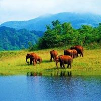 Charming Kerala 6 Nights 7 Days Tour