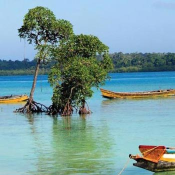 Wonderful Andaman Tour