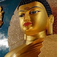 Buddha Parikrama  Tour