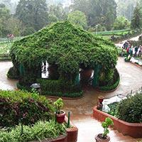Ooty Botanical Garden