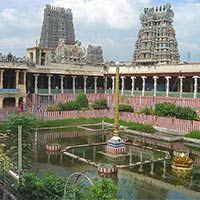 Madurai Meenaksh amman Temple Lotus tank