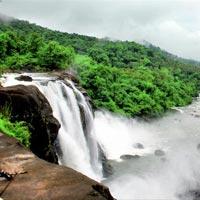 Kerala Wild Tour