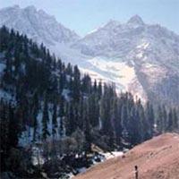 Amazing Tour of Kashmir