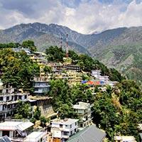 Delhi - Shimla Special Tour