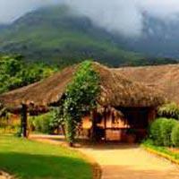 Mysore - Ooty - Kodaikanal Packages