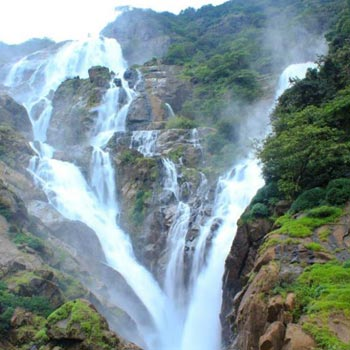 Dudhsagar Waterfall Trip Tour