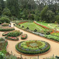 Magnificent Nilgiri Tour