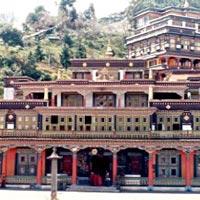 Darjeeling Luster Tour