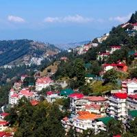 Delhi - Manali - Shimla - Delhi Tour Package