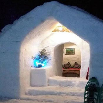Manali Trip With Igloo Camp Stay Tour