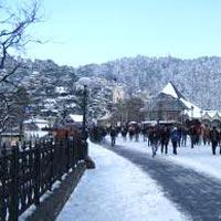 Honeymoon in Shimla & Manali Tour