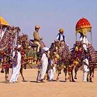 Desert Festival - Jaisalmer Tour
