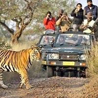 Rajasthan Fantasy Tour
