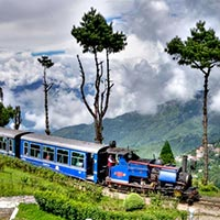 Best of Darjeeling Tour