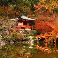 Summer Splendor of Japan Holiday Tour Package