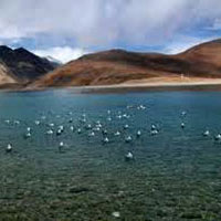 Ladakh With North India Culture Tour