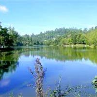 Kodaikanal & Munnar Or Ooty Honeymoon Special