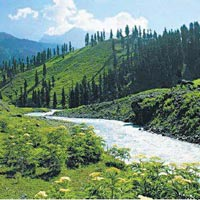 Amazing Himachal 10 Nights /11 Days Package