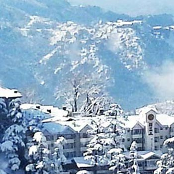 Shimla 3N/4D Package From Chandigarh