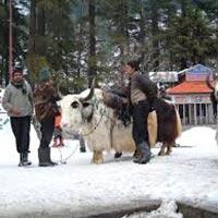 Dharamshala, Dalhousie, Khajjiar, Chamba & McLeodganj Tour