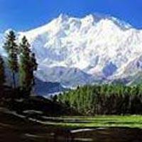 Honeymoon Kashmir Tour Package
