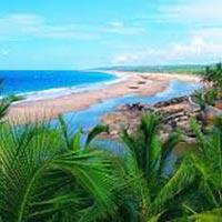 Kerala :- Cochin - Munnar - Alleppey  Tour