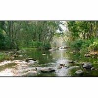 Kerala Nature Tours