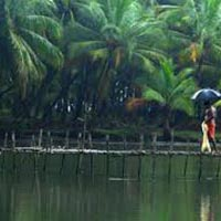Honeymoon Packages Of Karnataka