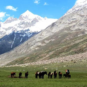 Pin Parvati Pass Trek Tour