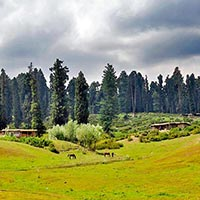 A Lover'S Paradise - The Vale Of Kashmir