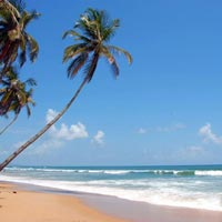 Escape to Goa (4n/5d) Tour