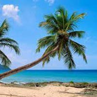 Luxurious Goa -3N/4D Tour