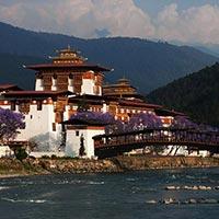 Bhutan - Lataguri Tour