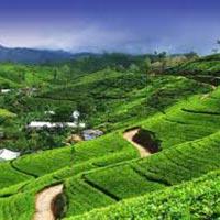 Darjeeling And Sikkim Grandeur Tour