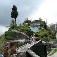 Darjeeling Gangtok 8 days Tour
