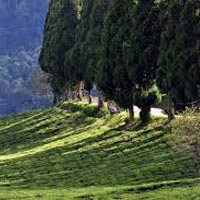North Sikkim Package 4 nights 5 days