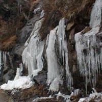 Gangtok - Lachung - Yumthang - Darjeeling -2 Tour