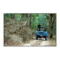 Jungle Tour / Safari Himalayan Dooars -1