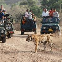 Royal Rajasthan with Delhi Agra Tour