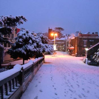 Shimla Manali Tour Packages By Car 14Seater Tempo5 Night 6 Days
