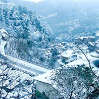Jalandhar to Shimla Kufri & Mashobra Tour