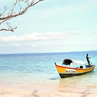 Andaman Island Delight