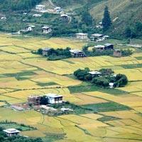 Glimpse of Thimphu & Paro Tour