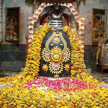 Anandvan-Hemalkasa-Tadoba-Somnath Tour