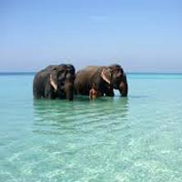 Andaman Luxurious Honeymoon Tour