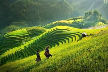 Vietnam - Cambodia Tour