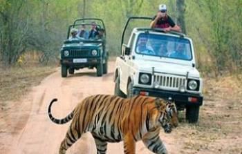 Delhi with Nainital Tour
