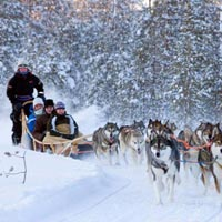 New Year's Adventure In Finnish Lapland Tour