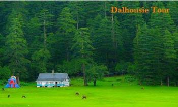 Delhi–Palampur–Dharamshala-Mcleod Gang–Dalhousie–Khajjiar–Delhi Tour