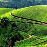 Visakhapatnam - Araku Valley Tour Package